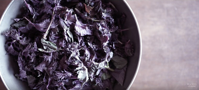 How to Make Red Shiso Juice by Peaceful Cuisine | Click & Grow Blog