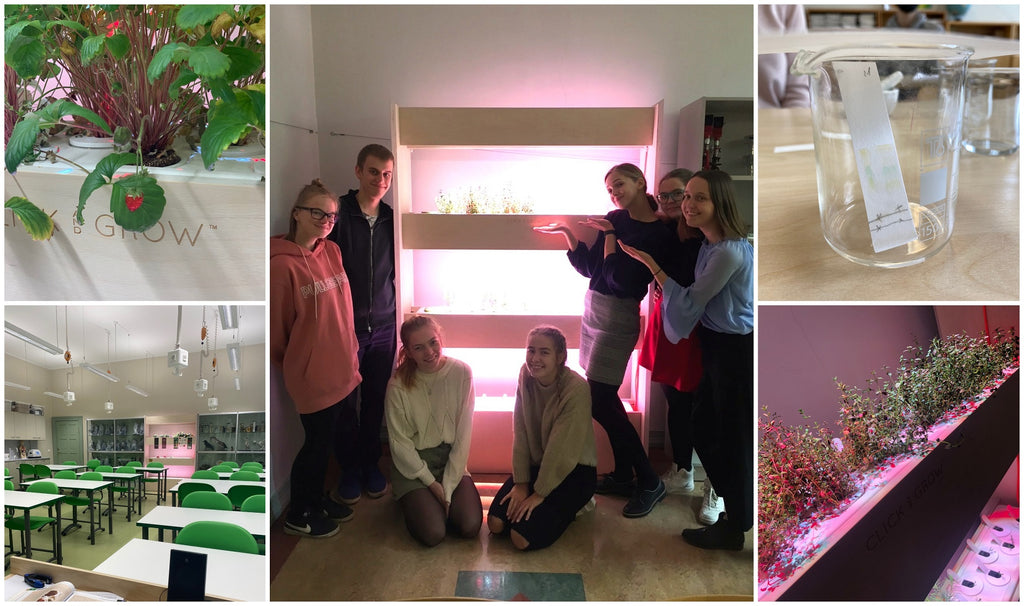 Collage of a classroom, plants and students standing beside a Click & Grow Wall Farm.