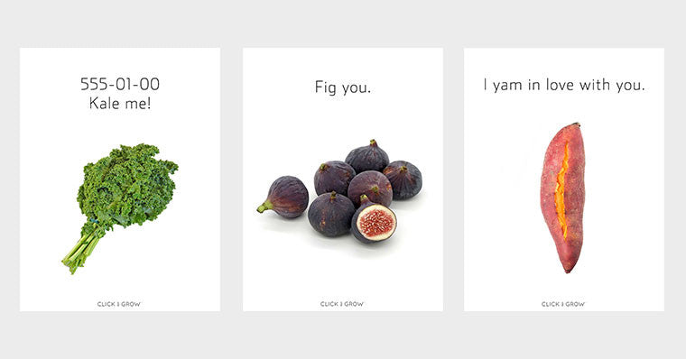 14 Valentine S Cards Rocking Plant Puns For Any Mood Click Grow
