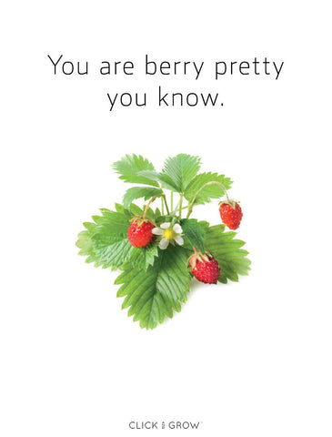 Plant puns wild strawberries