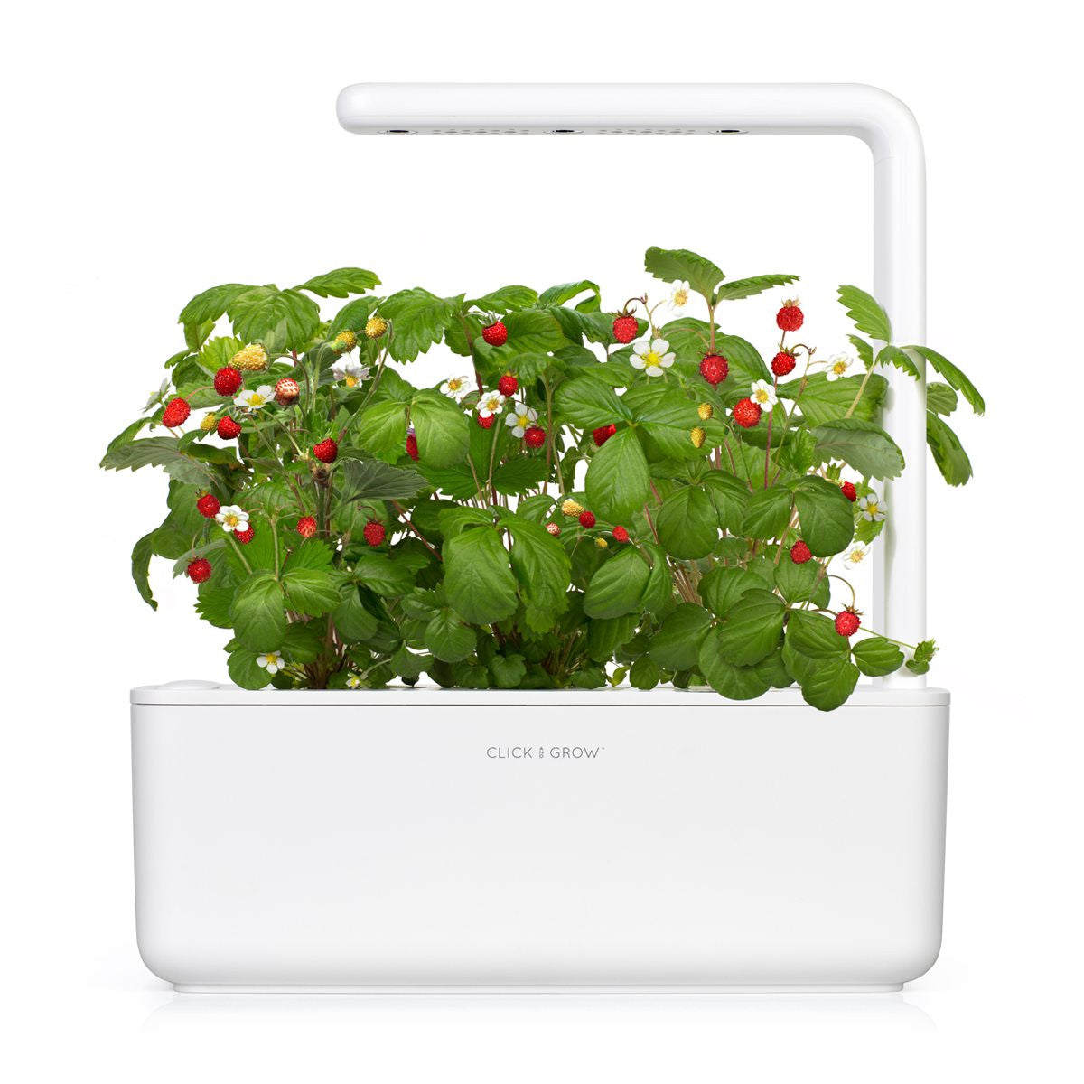 Smart Garden 3 by Click & Grow. Are you ready to eat better?