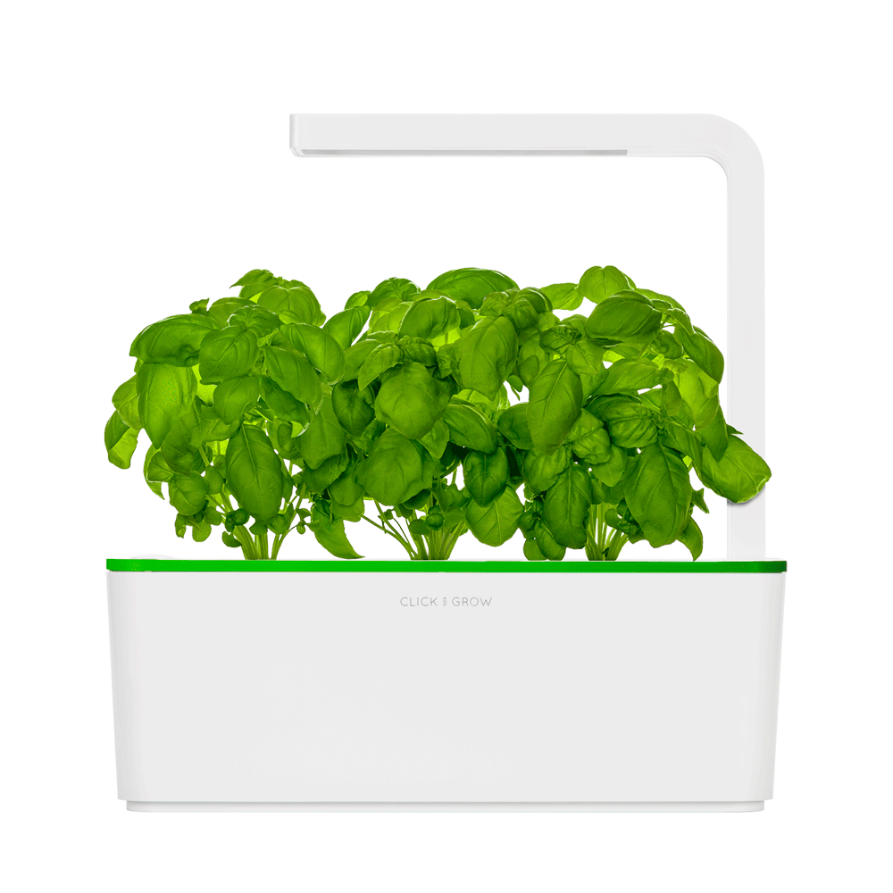 Smart Herb Garden. Grow Fresh Herbs, Fruits And Flowers With Zero Effort.