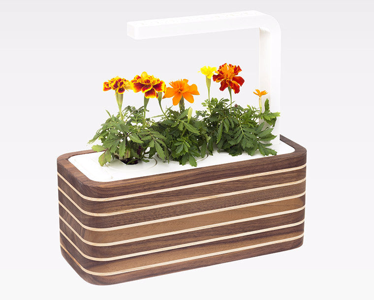 Crafted cases - Grow superfood at home. Smart Garden.