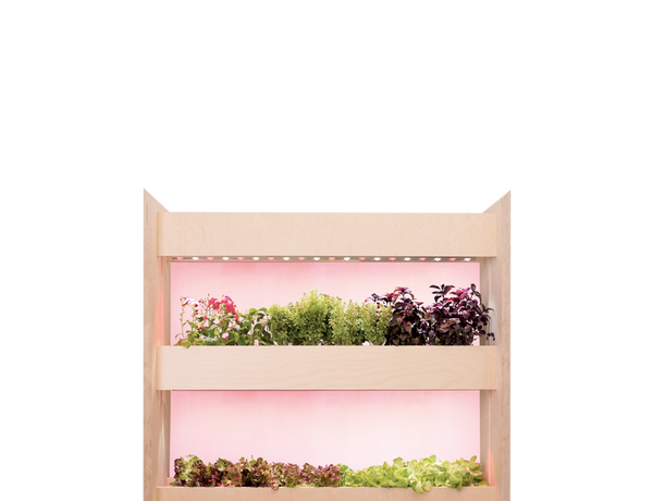 The Wall Farm Mini – Indoor Vertical Garden