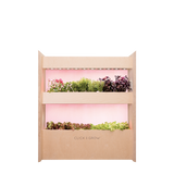 Wall Farm Mini indoor vertical garden. Start growing your own superfoods!