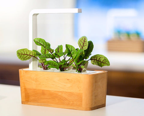Smart Garden Accessories - Grow superfood at home. Smart Garden.