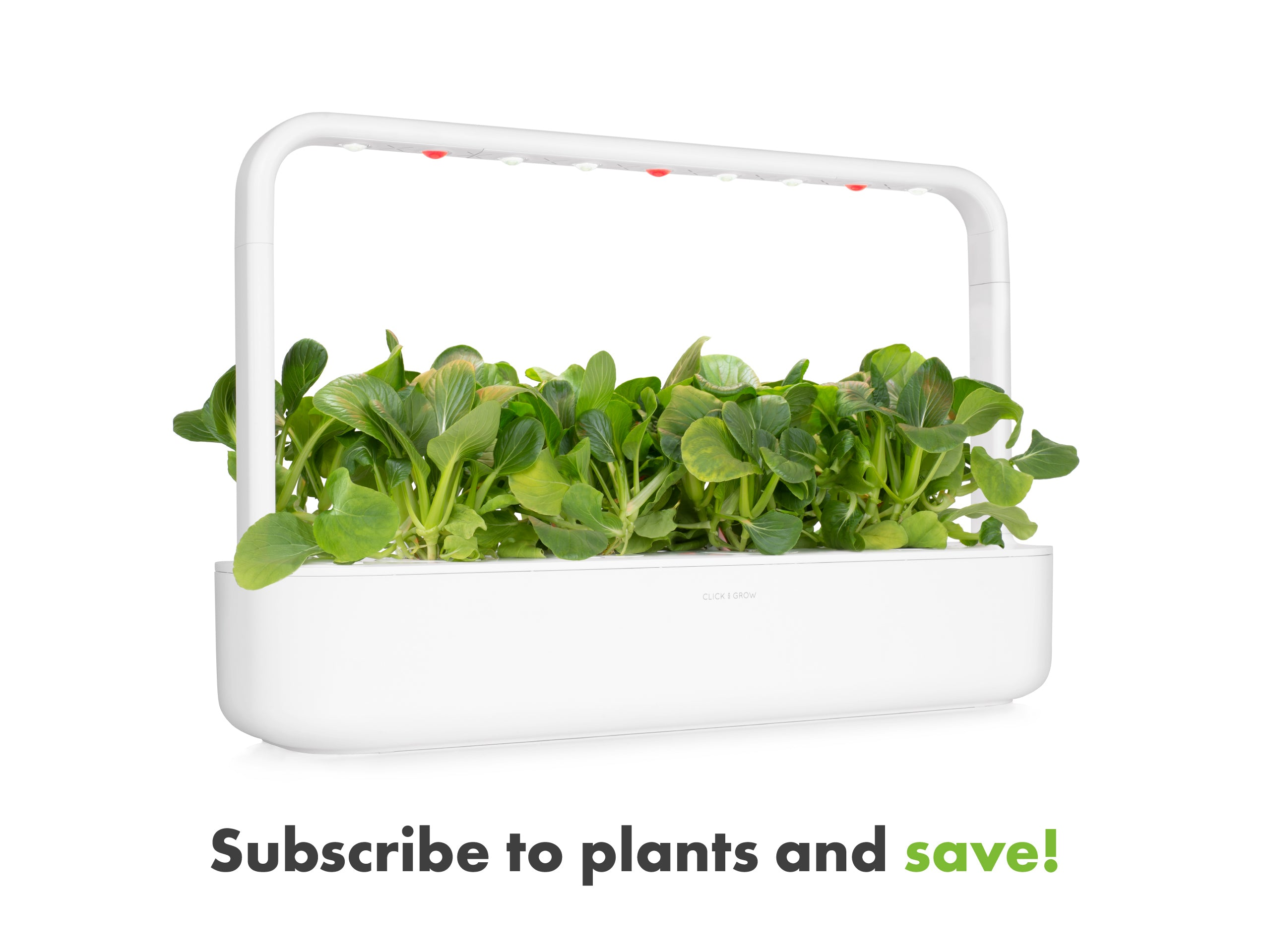 Click & Grow grow herbs at home - plant subscription