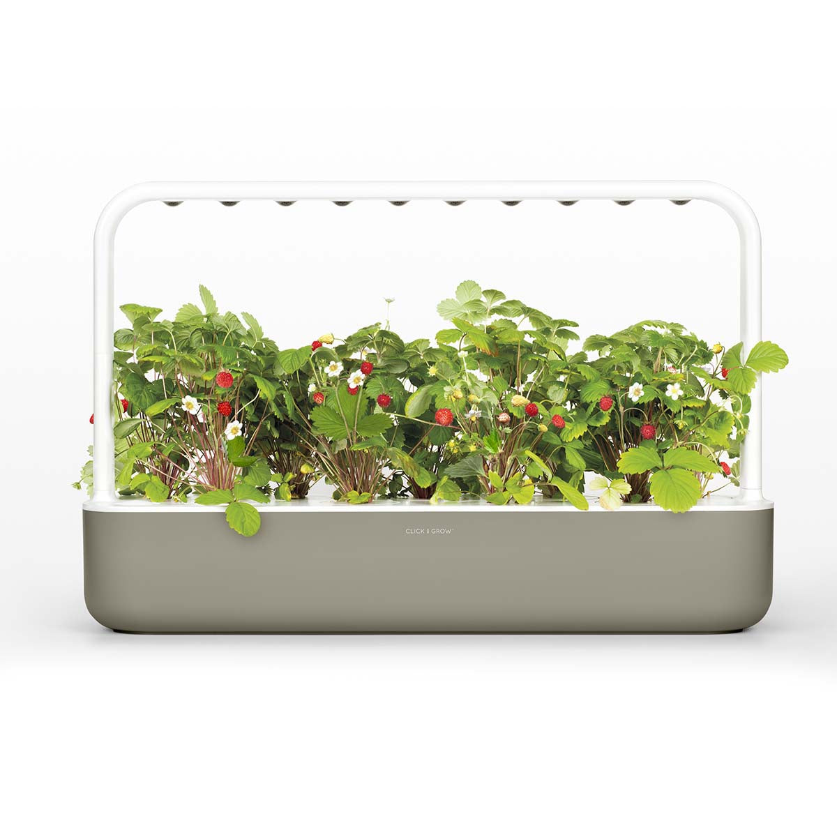Smart Garden 9 Subscription Bundle
