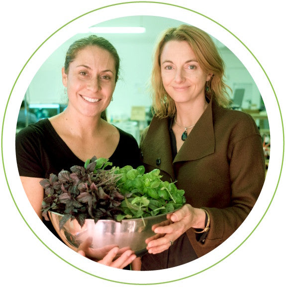 Singularity University researchers harvesting Click & Grow produce