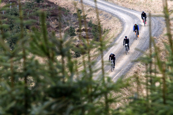 Looking through the trees to four gravel cyclists descending a fast and straight hill