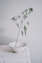 Load image into Gallery viewer, Porcelain Ikebana set