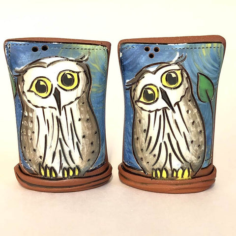 Owl Salt & Pepper Shaker Set
