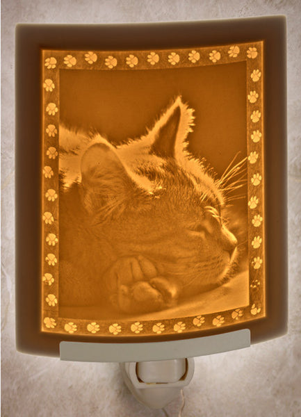Porcelain Night Light - Kitten Dreams