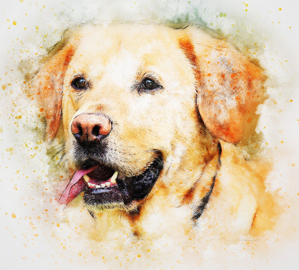 Yellow Labrador Watercolor Cross Stitch Chart