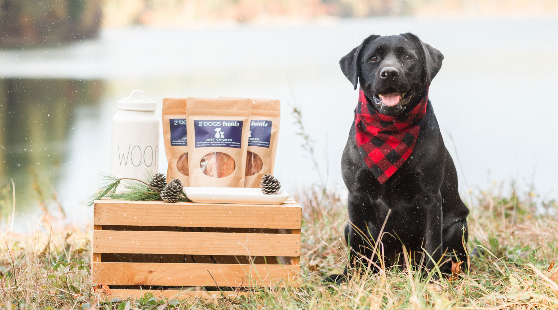 Holiday Gifts for all your pups