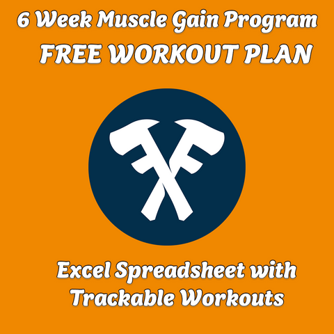 Muscle Gain Program