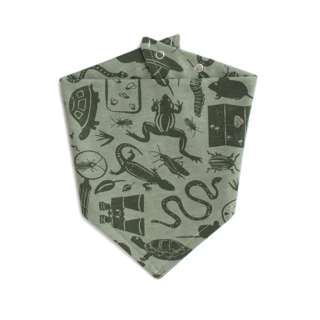 Kerchief Bib - Nature Explorer Sage & Forest Green