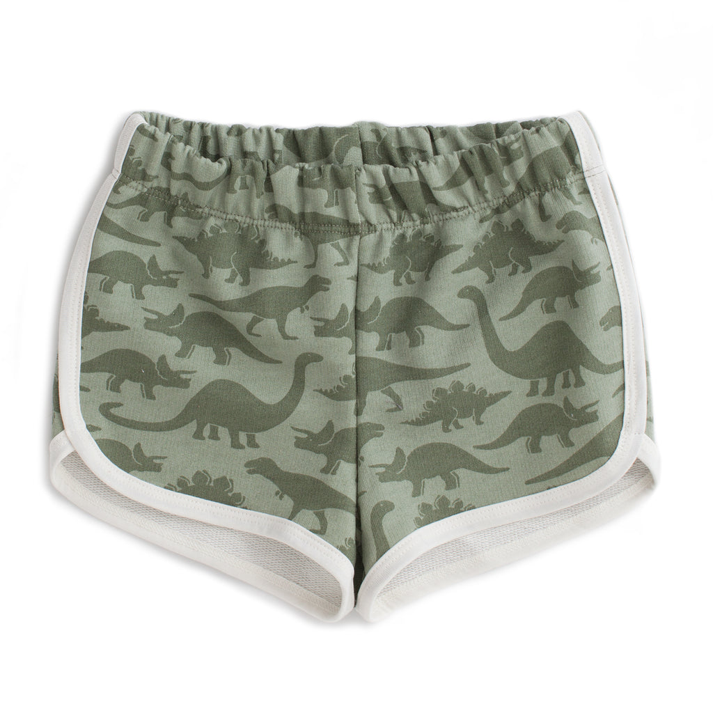 French Terry Shorts - Dinosaurs Sage