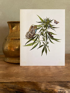 Cannabis Note Card