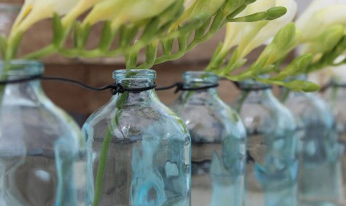 http://3bucketsfull.com/collections/glass-jars-preserving-bottles-online-nz