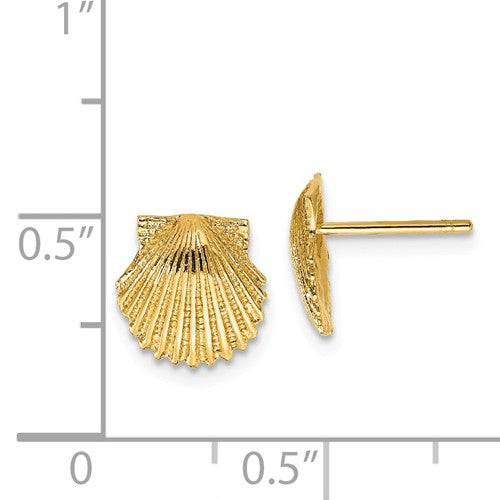 EARBBQGTC569 14k Scallop Shell Post Earrings