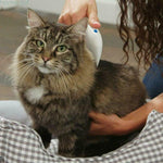 Electronic Lice Comb for Cats Dogs