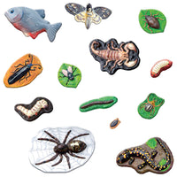 Nature's Creatures Mould & Paint Kit