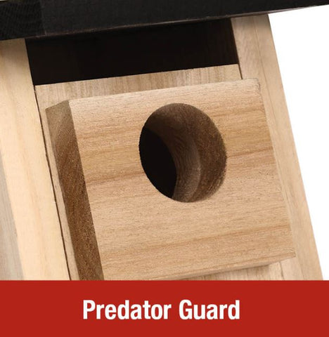 Bluebird House Predator Guard