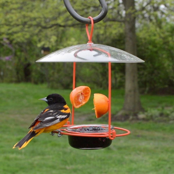 Wire Oriole Feeder (Model# OFM1)