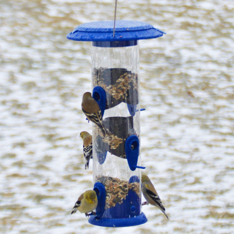 four birds feeding from the Nature's Way Wide Funnel Flip-Top Tube Feeder in winter