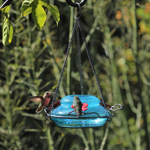 two hummingbirds feeding from the Nature's Way hand blown glass garden hummingbird feeder in mason jar blue