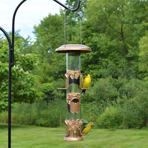 two finches feeding from the Nature's Way Deluxe Funnel Flip-Top Tube Feeder