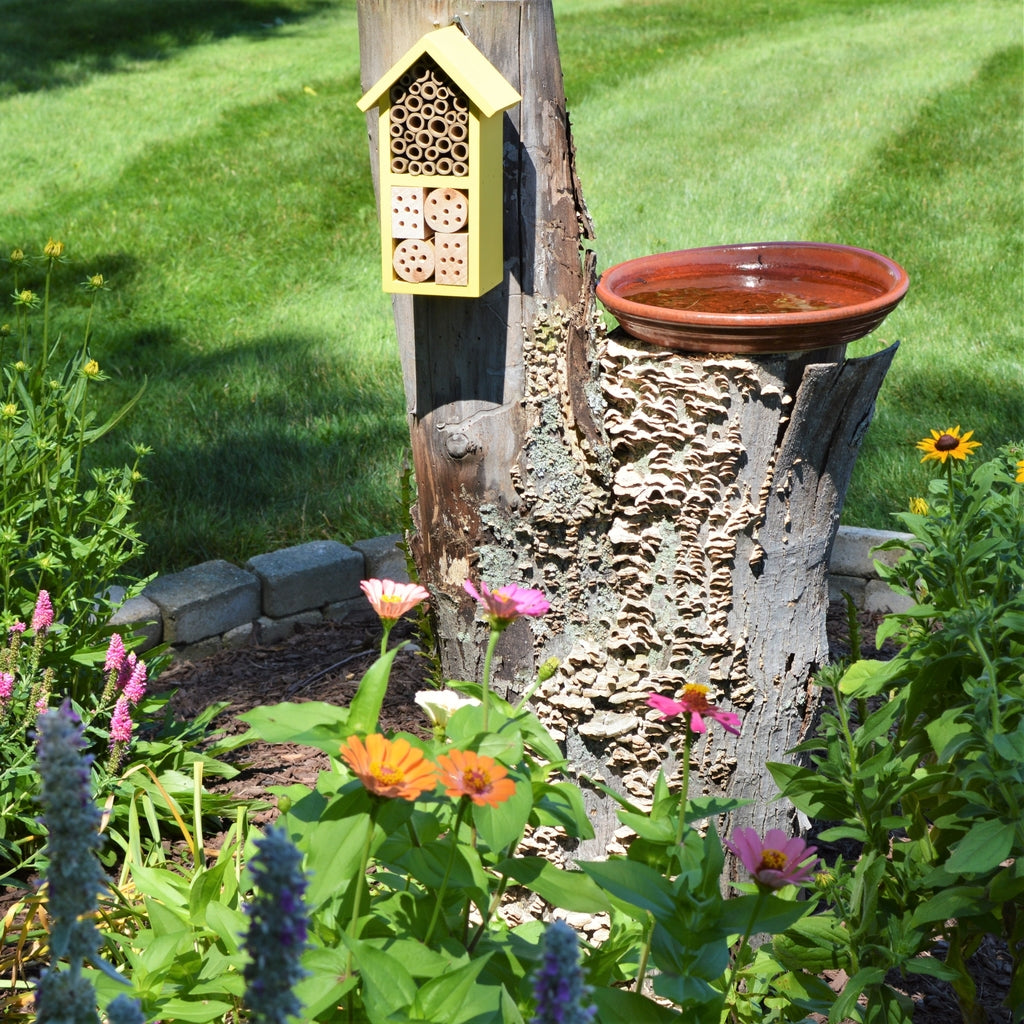 Better Gardens Dual Chamber Beneficial Insect House Model Pwh2 A Natureswaybirds Com