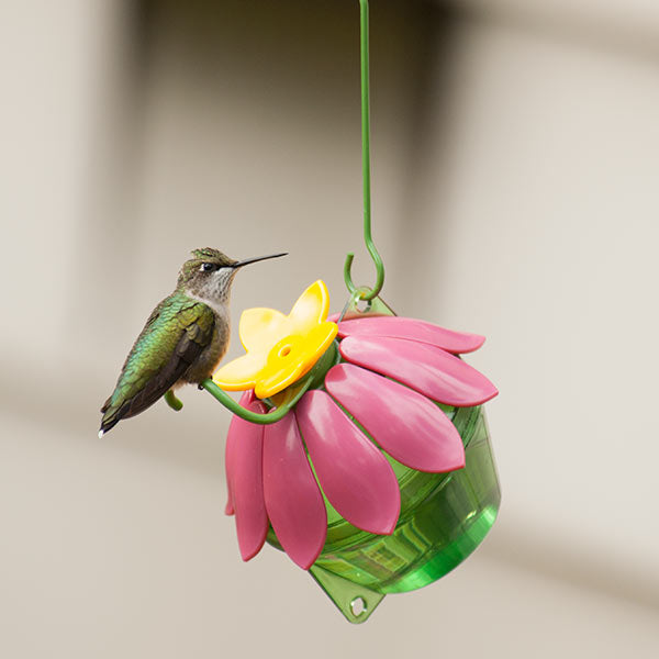 feeders humming the bird self recycled feeder hummingbird from material homemade