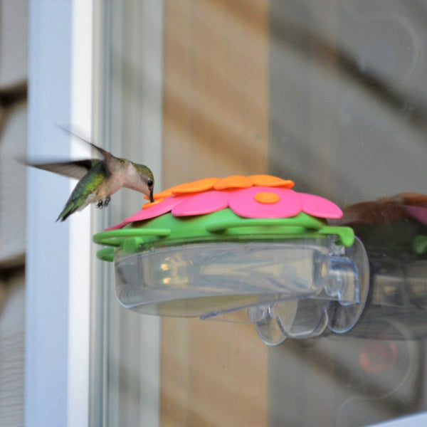 So Real Window Hummingbird Feeder - Honeysuckle (Model# WFHF3)