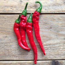 Load image into Gallery viewer, Cayenne Hot Pepper Seeds