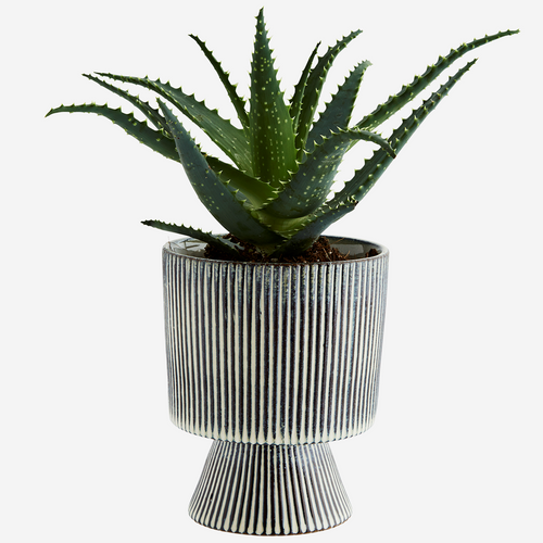 Striped Plant Pot - Large