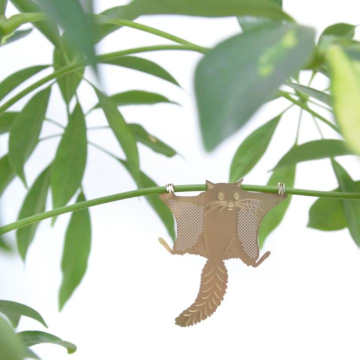 Flying Squirrel Plant Animal