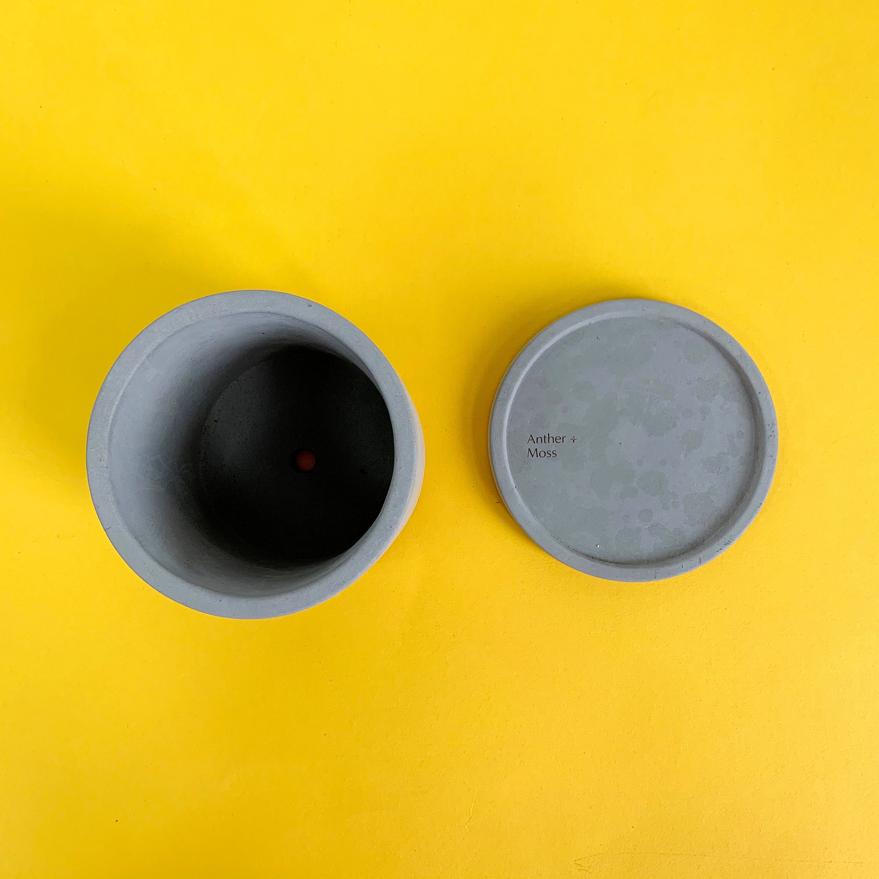 Concrete Pot by Anther & Moss - Small