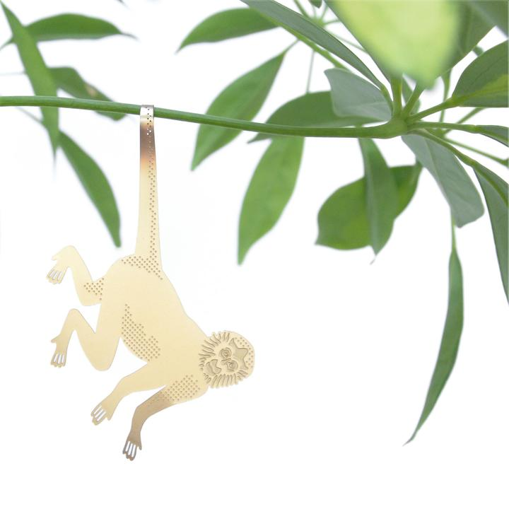 Spider Monkey Plant Animal