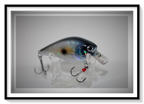 HOLOGRAPHIC GIZZARD SHAD 2.5 SQUARE BILL