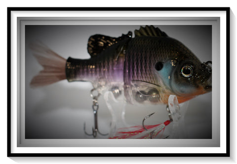 BLUEGILL 2-JOINTED SWIMBAIT