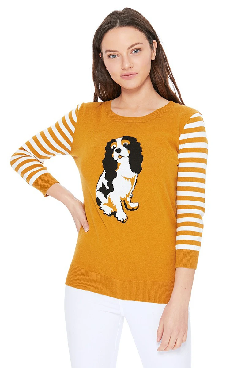 King Charles Spaniel Sweater