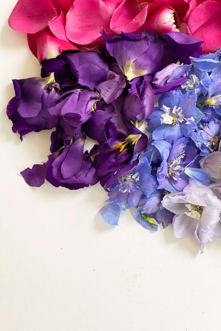 Beautiful collection of flower petals in many colours. Botanical design and flower arrangements in Wellington