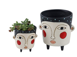 Baby Black Polly - Planter