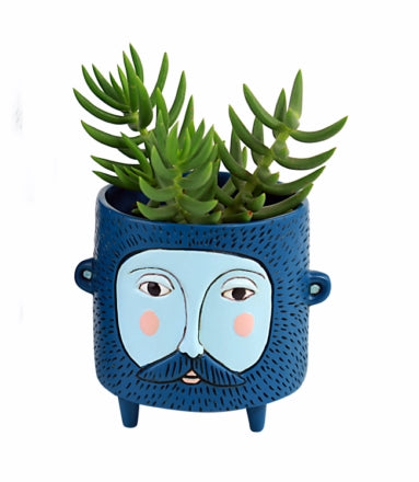 Baby Hairy JACK blue planter
