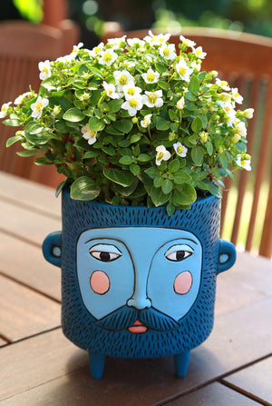 Hairy Jack Blue Planter