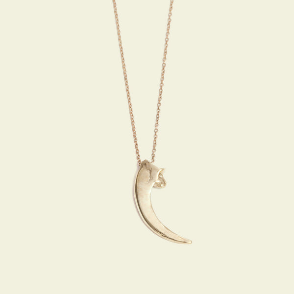 Raptor Talon Necklace (brass)