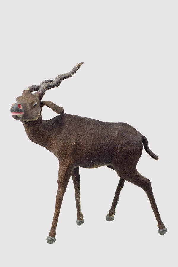 Miniature Taxidermy Antelope