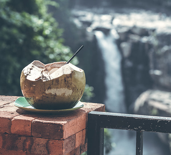 Is coconut water actually better than plain water?